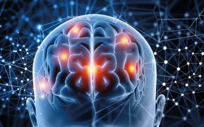 ¡Es la neurodidáctica, vieja escuela!